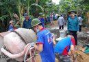 Tuổi trẻ Hải Châu hành quân dã ngoại làm công tác dân vận tham gia  xây dựng nông thôn mới năm 2018 tại xã Hòa Nhơn, huyện Hoà Vang